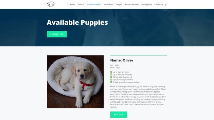 Happylabradorhouse.com - Labrador Puppy Scam Review
