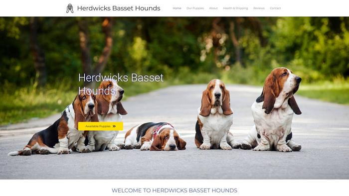 Herdwicksbassethounds.com - Bassethound Puppy Scam Review