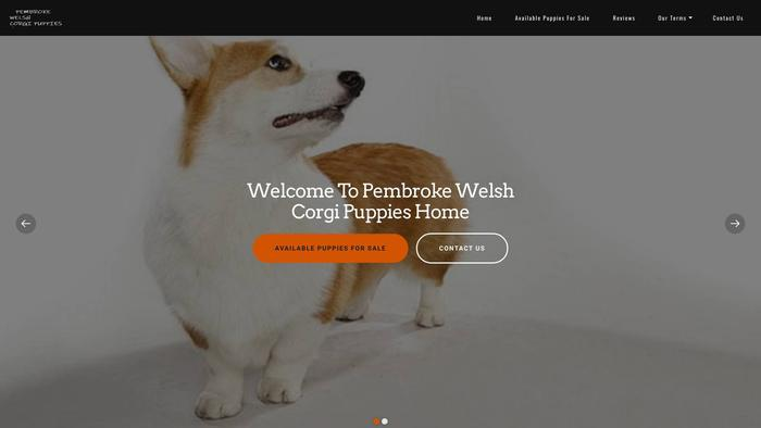 Loyalwelshcorgihome.com - Corgi Puppy Scam Review