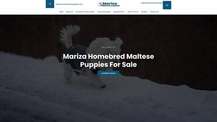 Marizamaltesepuppies.com - Maltese Puppy Scam Review