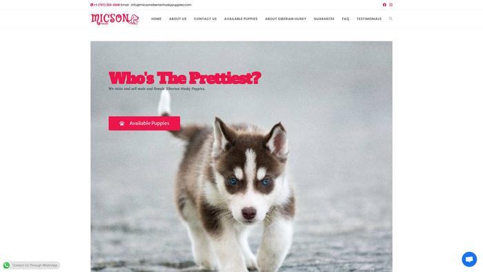 Micsonsiberianhuskypuppies.com - Husky Puppy Scam Review