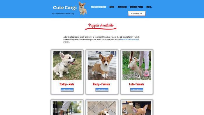 Mycutpembrokeewelshcorgi.com - Corgi Puppy Scam Review
