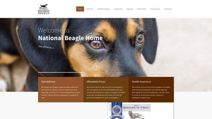 Nationalbeaglehome.com - Beagle Puppy Scam Review