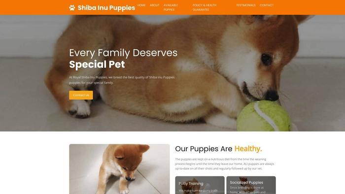 Royalshibainupuppies.online - Shibhainu Puppy Scam Review