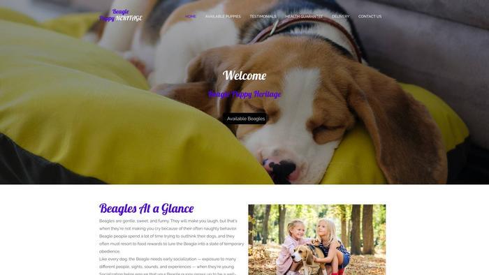 Beaglepuppyherritage.com - Beagle Puppy Scam Review