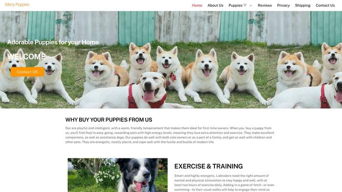 Merrypuppies.com - Shihtzu Puppy Scam Review