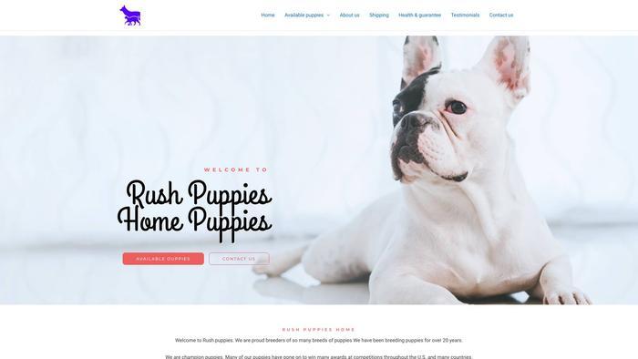 Rushpuppies.com - Corgi Puppy Scam Review