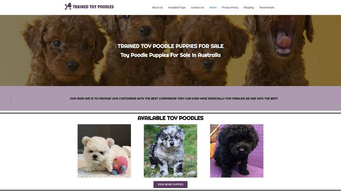 Trainedtoypoodlepuppies.com - Poodle Puppy Scam Review