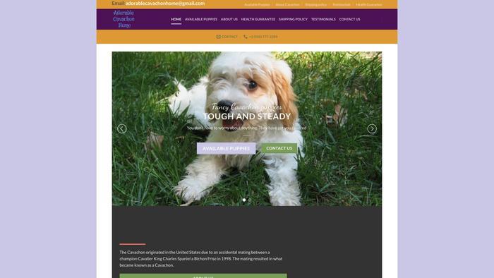 Adorablecavachonhome.com - Cavachon Puppy Scam Review