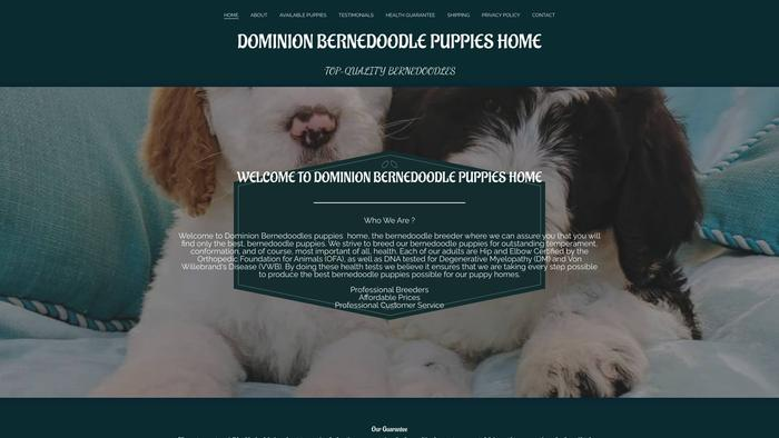 Caritaschowchow.com - Chowchow Puppy Scam Review