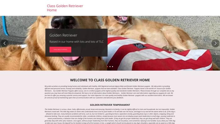 Classgoldenretrieverpuppies.com - Golden Retriever Puppy Scam Review