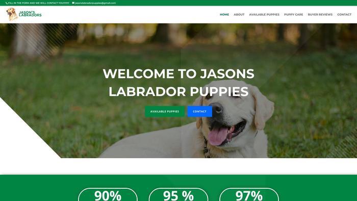 Jasonslabradorpuppies.com - Labrador Puppy Scam Review