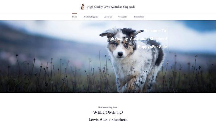 Lewisaustralianshepherd.com - Germanshepherd Puppy Scam Review
