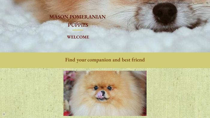 Masonpomeranianpuppies.net - Pomeranian Puppy Scam Review
