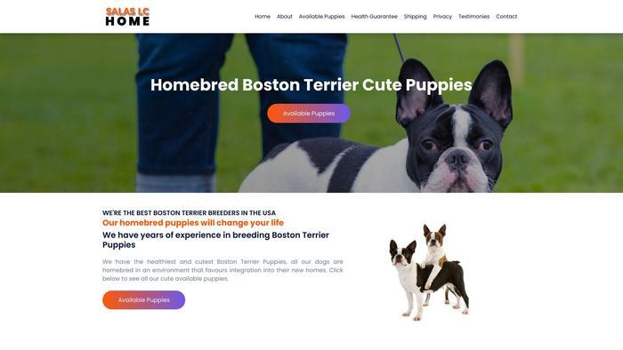 Salaslchome.com - Boston Terrier Puppy Scam Review