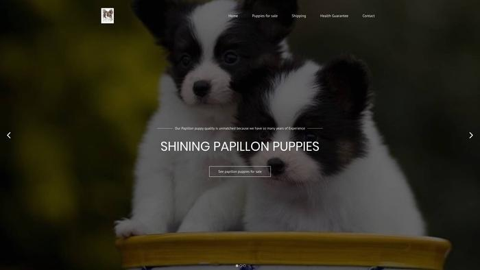 Shiningpapillons.com - Papillon Puppy Scam Review