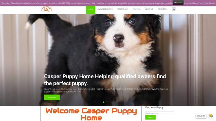 Casperpuppyhome.com - Bernedoodle Puppy Scam Review