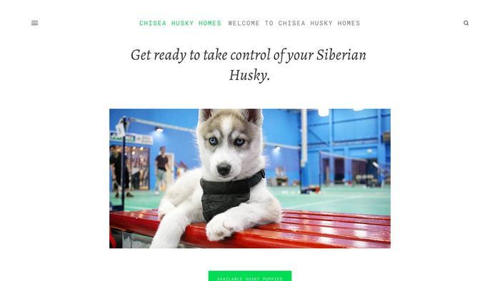 Chiseahuskyhomes.com - Husky Puppy Scam Review