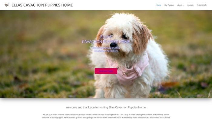 Ellascavachonpuppieshome.com - Cavachon Puppy Scam Review
