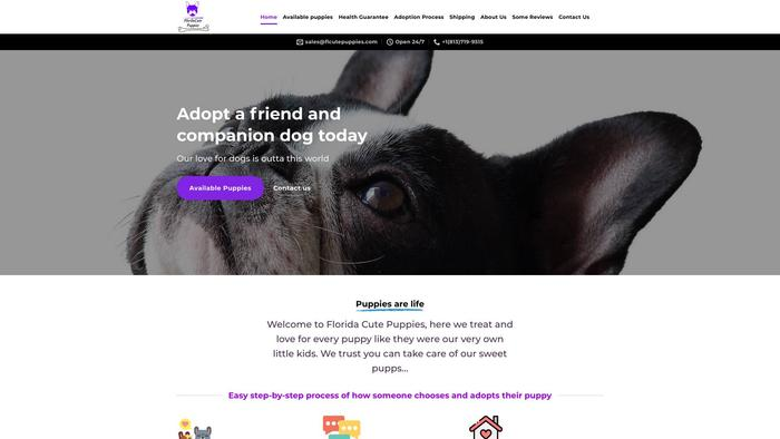 Flcutepuppies.com - French Bulldog Puppy Scam Review