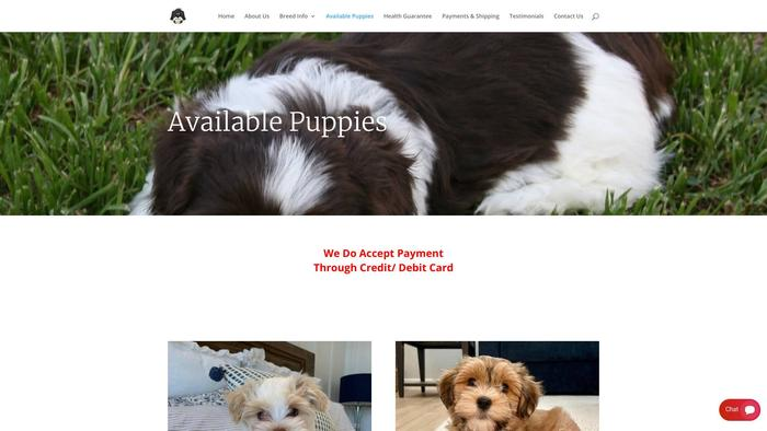 Gorgeoushavanesepuppies.com - Havanese Puppy Scam Review
