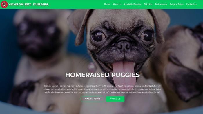 Homeraisedpuggies.com - Pug Puppy Scam Review