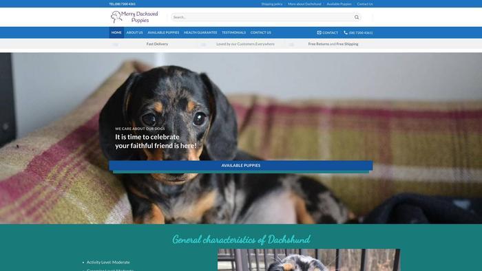 Merrydachshundpuppies.com - Dachshund Puppy Scam Review