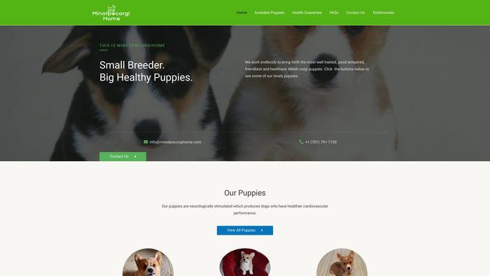 Minotpwcorgihome.com - Corgi Puppy Scam Review
