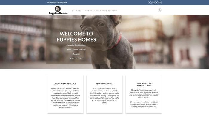 Puppies-homes.com - French Bulldog Puppy Scam Review