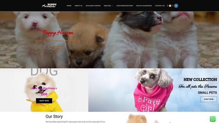 Puppyheavens.com - Pomeranian Puppy Scam Review