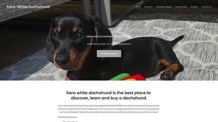 Serawhitedachshunds.com - Dachshund Puppy Scam Review