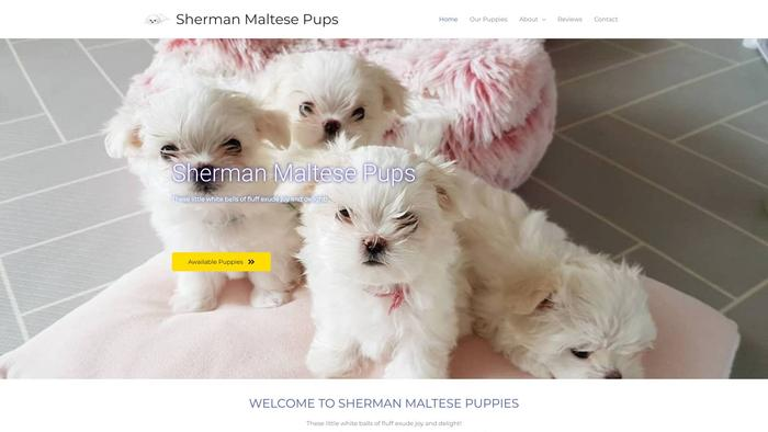Shermanmaltesepups.com - Maltese Puppy Scam Review