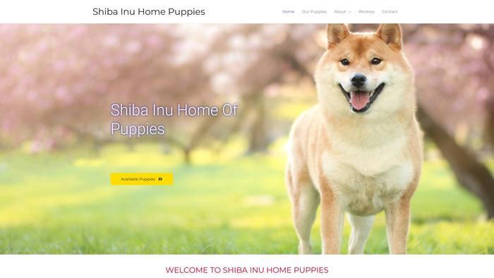 Shibainuhomepuppies.com - Shibhainu Puppy Scam Review