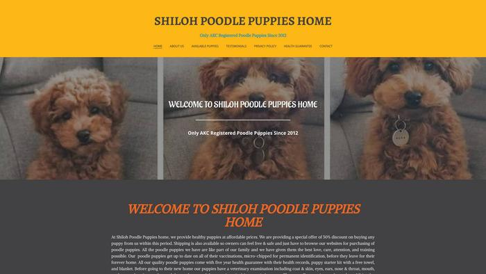 Shilohpoodle.com - Poodle Puppy Scam Review