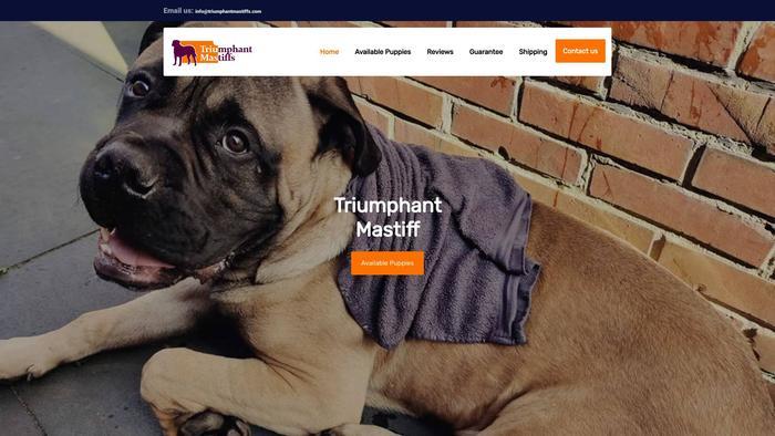 Triumphantmastiffs.com - Tibetan Mastiff Puppy Scam Review