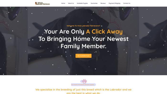 Vivialabradorretrievers.com - Golden Retriever Puppy Scam Review