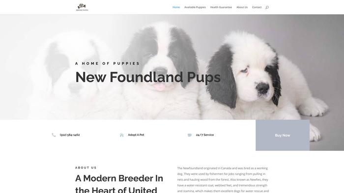 Adorablenewfies.com - Saint Bernard Puppy Scam Review