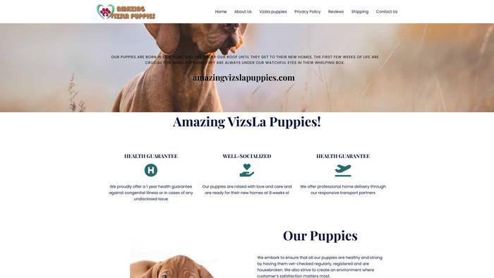 Amazingvizslapuppies.com - Labrador Puppy Scam Review