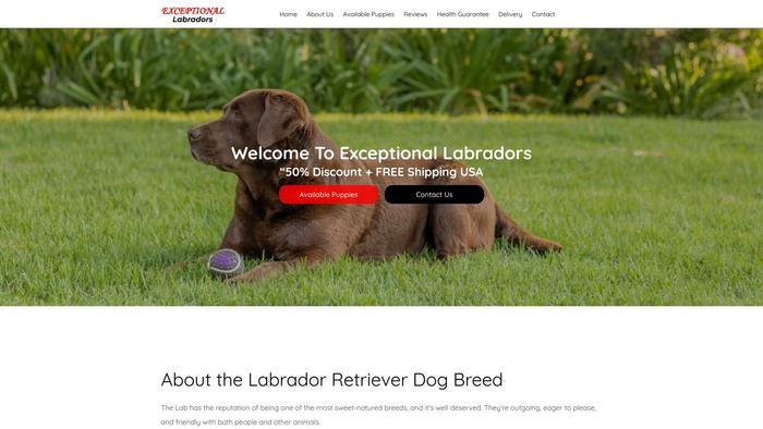 Exceptionallabradors.com - Labrador Puppy Scam Review