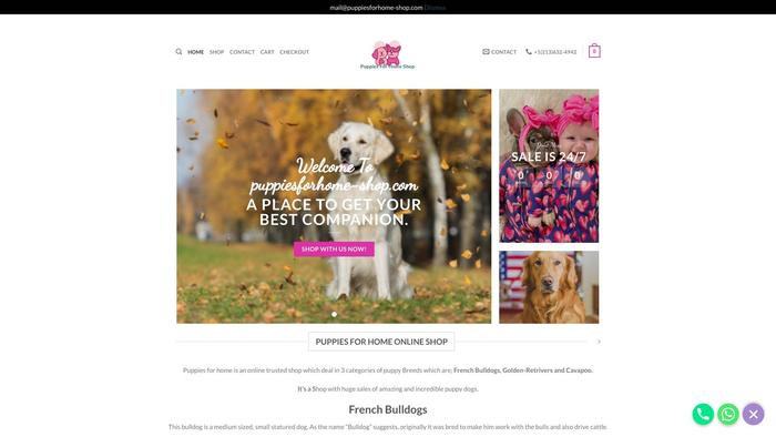 Puppiesforhome-shop.com - French Bulldog Puppy Scam Review