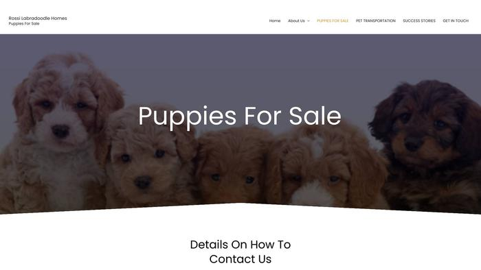 Rossilabradoodlehomes.com - Labradoodle Puppy Scam Review