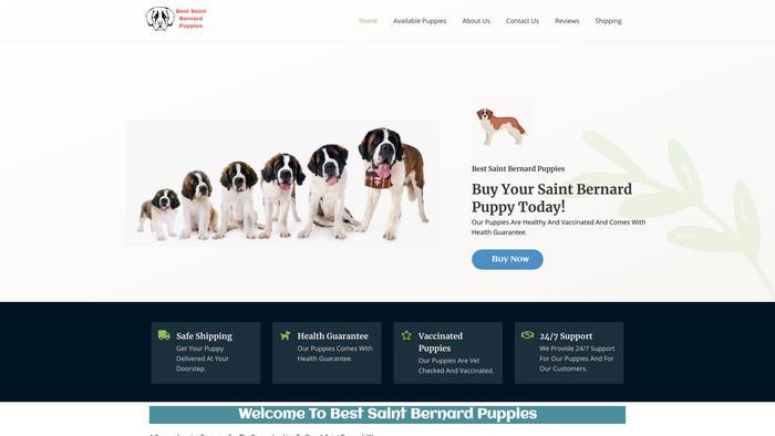 Bestsaintbernardpuppies.com - Saint Bernard Puppy Scam Review