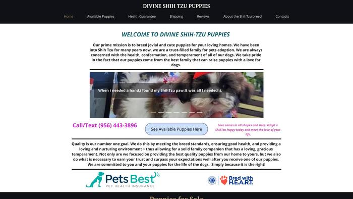 Divineshihtzupuppies.com - Shihtzu Puppy Scam Review