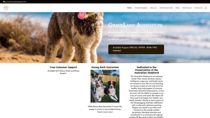 Gracelandaussiepups.com - Australian Shepherd Puppy Scam Review