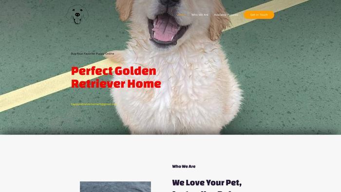 Perfectgoldenretrieverhome.com - Golden Retriever Puppy Scam Review
