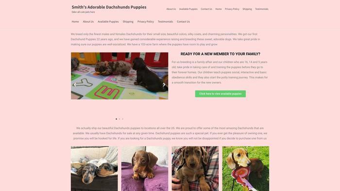 Sdachshundspuppies.com - Dachshund Puppy Scam Review