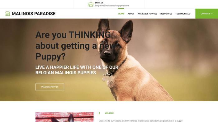 Belgianmalinoisparadise.com - Germanshepherd Puppy Scam Review