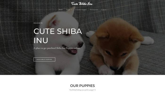 Cuteshibainu.com - Shibhainu Puppy Scam Review