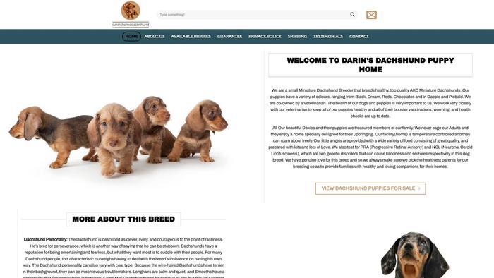 Darinshomedachshunds.com - Dachshund Puppy Scam Review