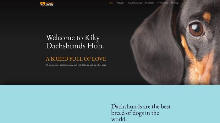 Kikydachshundhub.com - Dachshund Puppy Scam Review